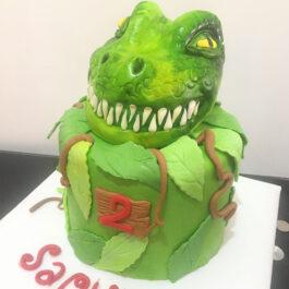 Torta Dino
