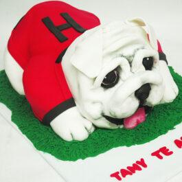 Torta Boxer
