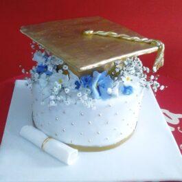 Torta Grado Mujer